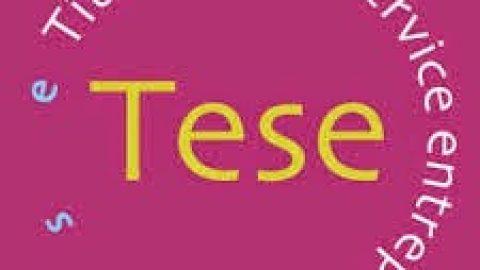 Titre Emploi Service Entreprise (TESE)