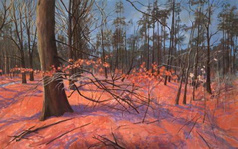 Laurens Boersma (Oosterwierum 1957) – beeldend kunstenaar.